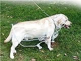 DogLemi Large Dog Raincoat Pet Raincoat Large Dog Coat (PS-PD10004-WT-XXXL)