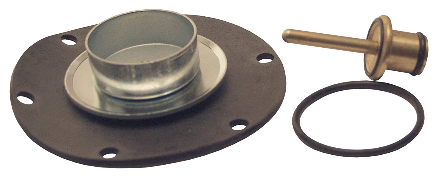 Dixon RK119A Relieving Diaphragm Valve Assembly Kit for R119-04