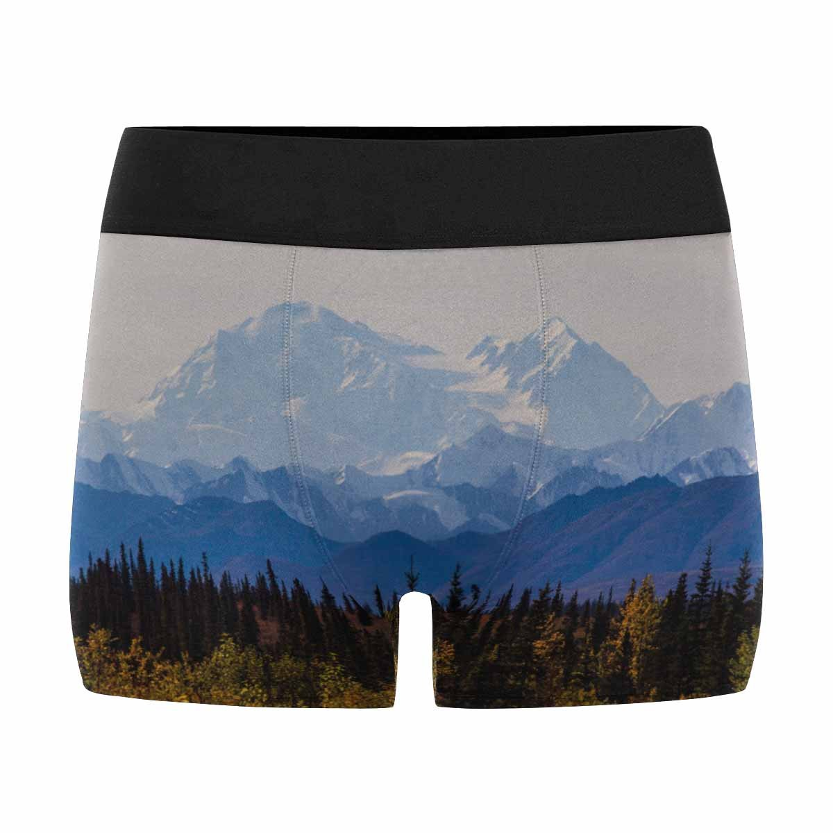 XS-3XL Alaska INTERESTPRINT Custom Mens All-Over Print Boxer Briefs Fall Foliage in Denali National Park with Mountain in