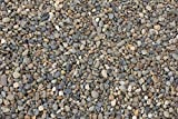 Natural Aquarium Gravel Pebble for Freshwater or Saltwater Tanks and Ponds (Dos Rios)