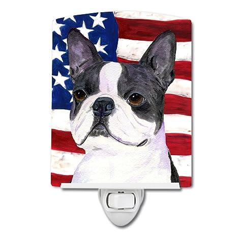 Carolines Treasures USA American Flag with Bulldog English Night Light 6 x 4 Multicolor