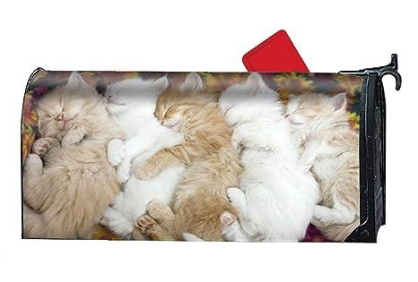 a3f93f9f078c Amazon.com   Verna Christopher Animal Cats Mailbox Cover - Mailbox ...