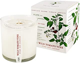 product image for Wild Tomato Vine Candle with Plantable Box