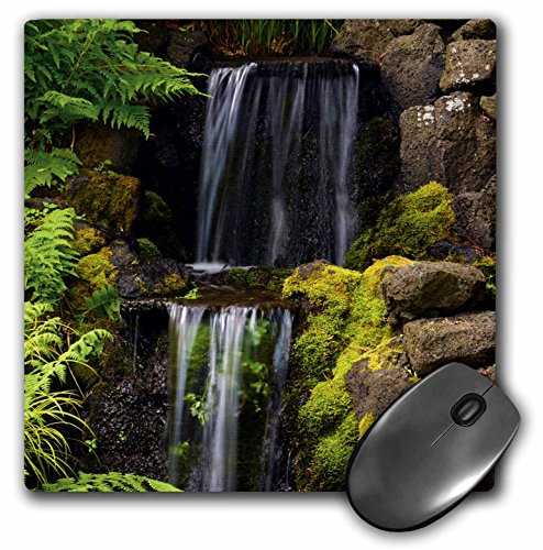 Garden Rhododendron - 3dRose Waterfall Crystal Springs Rhododendron Garden Portland Oregon USA Mouse Pad (mp_191681_1)