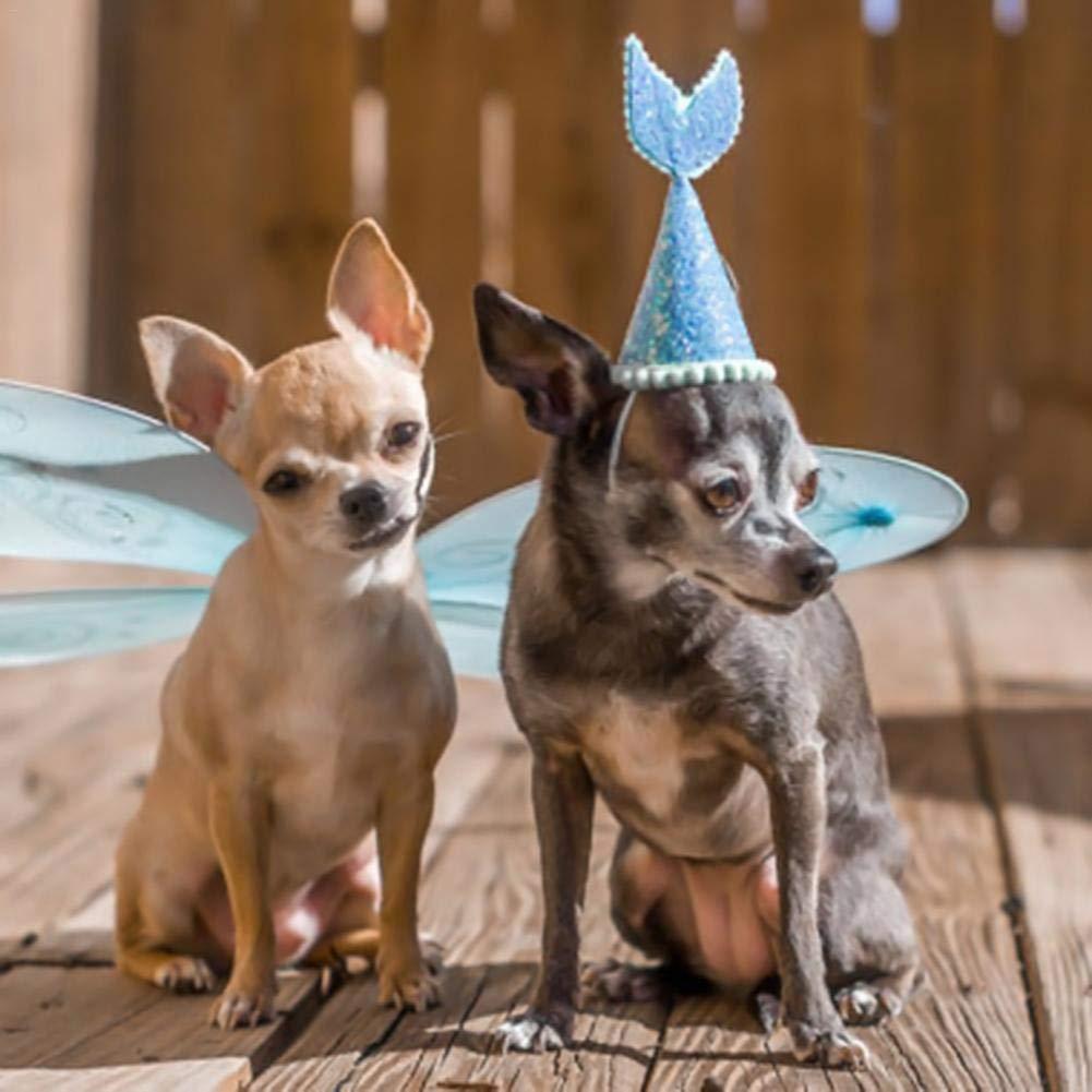 Ridecyle - Sombrero para Perros y Gatos para Festivales, diseño de Cola de pez para Mascotas, Disfraz de Cosplay, cumpleaños, Navidad, Fiesta para Perros ...
