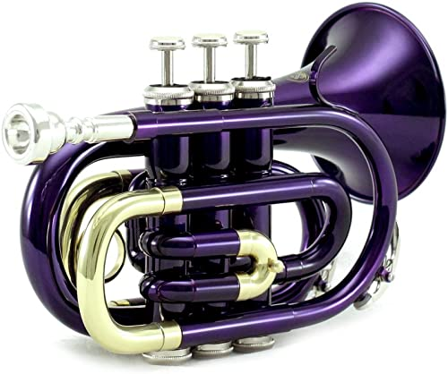 Sky Band Approved Brass Bb Pocket Trumpet