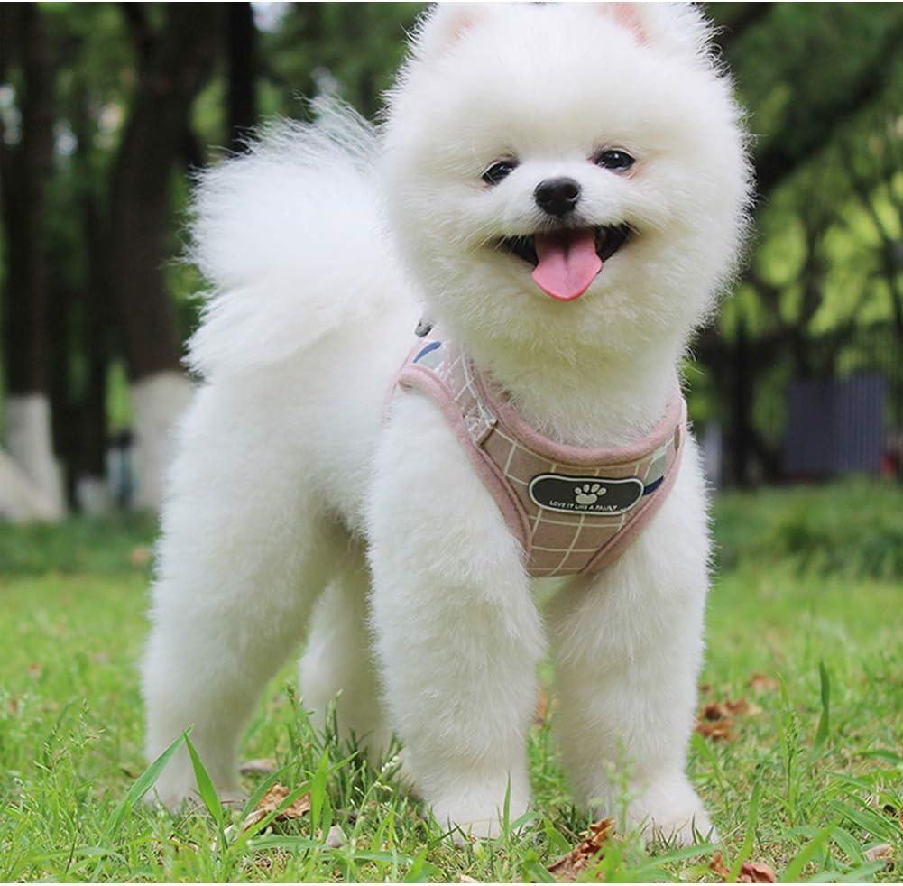 Kismaple Hundegeschirr und Leine kein Ziehen reflektierend weiches Netzgewebe S L f/ür kleine und mittelgro/ße Hunde Brustgeschirr XL XS kein W/ürgen M atmungsaktiv