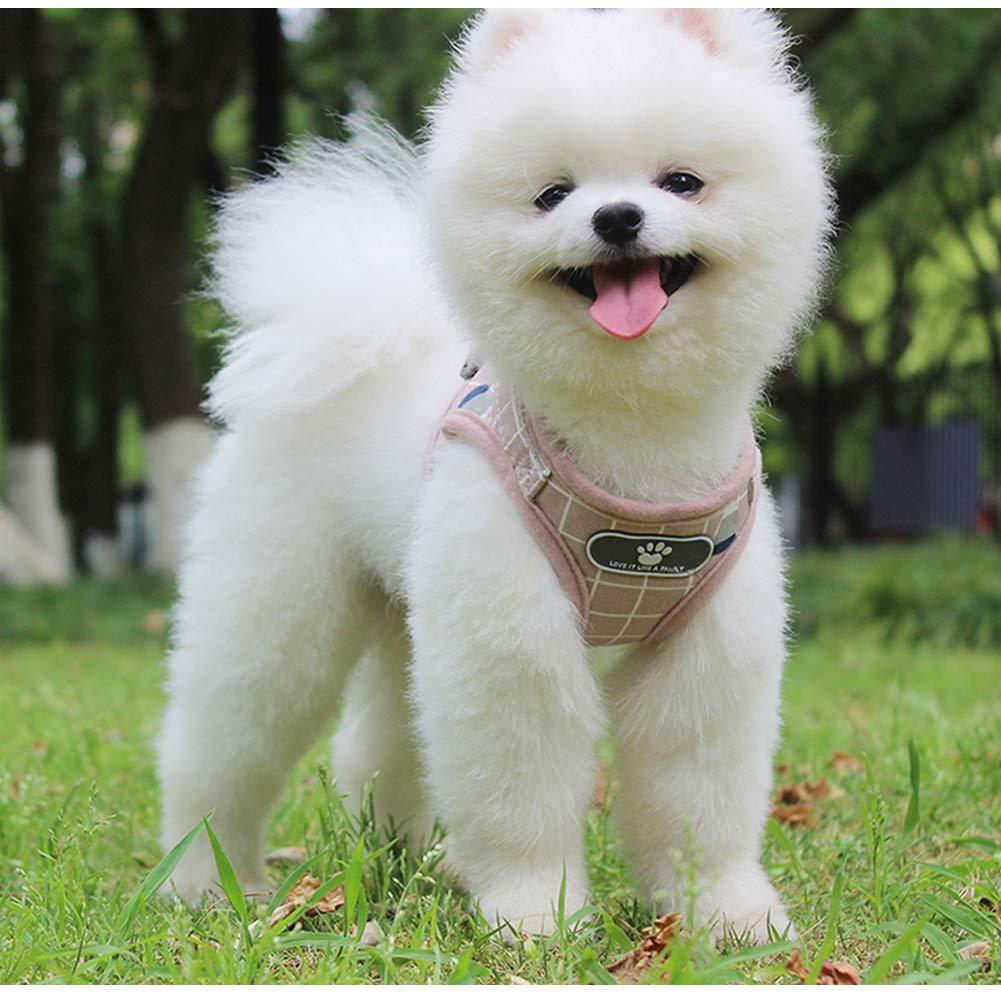 Puppy Mesh Harness/&Leash Set Pet Dog Soft Vest Walk Strap for Small Dogs S L