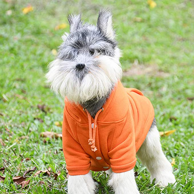 Amazon.com : BingYELH Pets Dog Clothes Hoodie Jacket Puppy Hooded Pullover Sweatshirt Cotton Winter Warm Coat : Pet Supplies