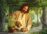 100% Hand Painted male portrait Christ Jesus watering the plants in landscape Canvas Oil Painting for Home Wall Art by Well Known Artist, Framed, Ready to Hang
