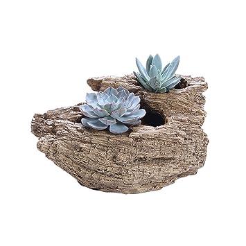 OUNONA Maceta para Cactus Plantas Flores Suculentas Estilo de Raíz ...