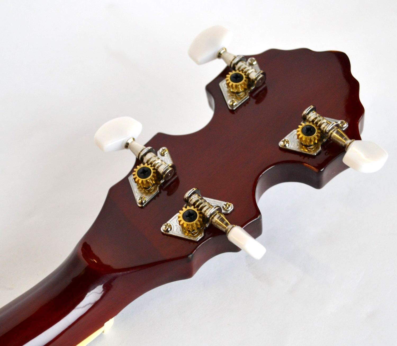 /5/corde/ /offerta speciale New Clearwater elettroacustica g bluegrass banjo/