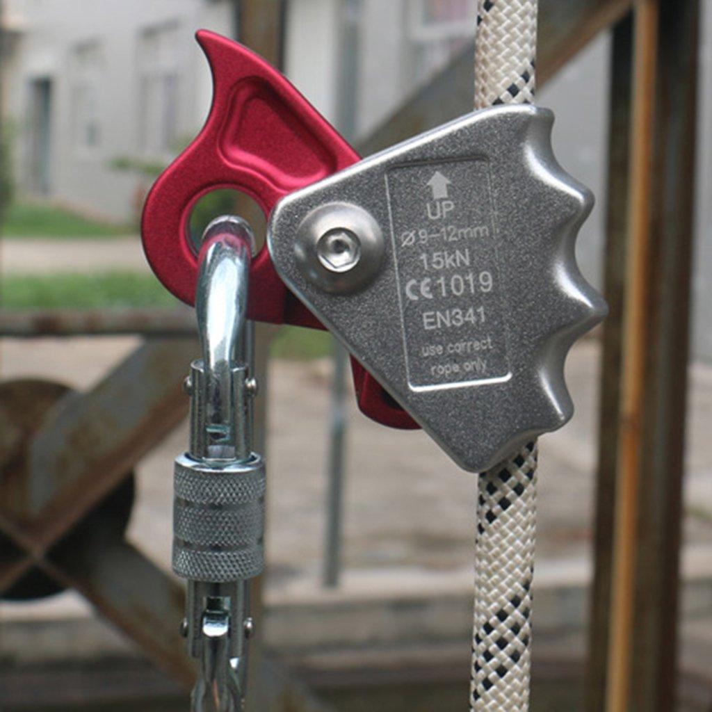 Sharplace Kletterausrüstung - - - 2er Pack Kletter Seilgreifer Für 9mm-12mm Seil Abseilgerät - Absturzsicherung Seil Karabiner B074N1N2K1 Normalkarabiner Große Klassifizierung 020437