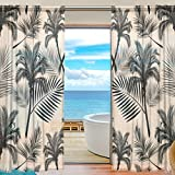 SEULIFE Window Sheer Curtain, Tropical Palm Tree Leaves Voile Curtain Drapes for Door Kitchen Living Room Bedroom 55x78 inches 2 Panels