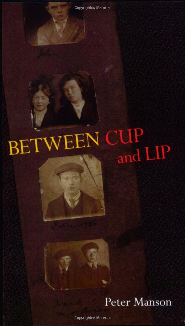 Between Cup And Lip Miami University Press Poetry Series Peter