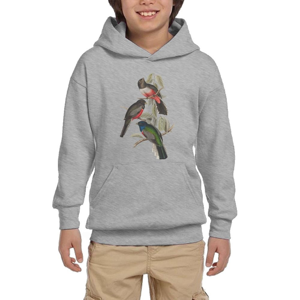GLSEY Three Birds In The Tree Youth Soft Pullovers Hooded Sweatshirts Long Sleeve