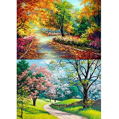 5D DIY Diamond Painting Kit for Adult, 2 Pack Trail Design Round Diamond Full Drill Paint with Diamonds Paintings Pictures Arts Craft for Home Decoration by INFELING, 34x24cm/14x10inch