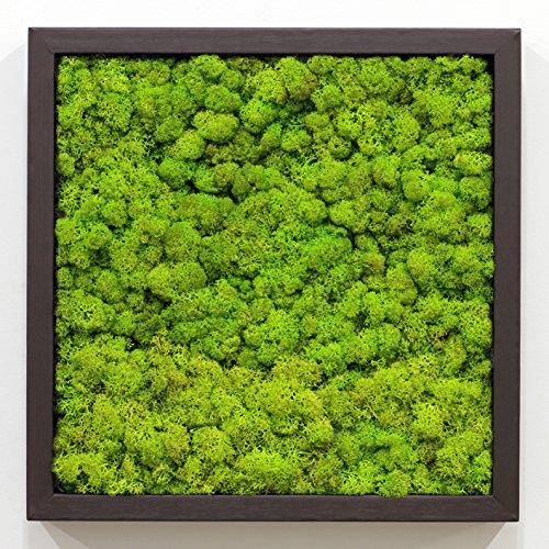 scandia-moss-framoair-purifier-panel-frame-air-purification-deodorization-air-sanitizer-spring-green
