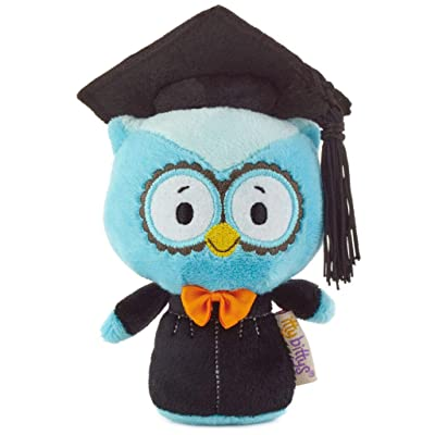 HMK itty bittys 2020 Blue Graduation Owl Stuffed Animal: Toys & Games