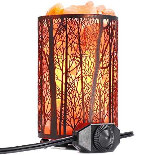 Arvidsson Himalayan Salt Lamp, Natural Hymalain Pink Rock Salt Lamps Night Light in Metal Basket with Dimmer Switch (4.4-5lbs, 4.1x6.5''), 25Watt Bulb & ETL Certified Cord