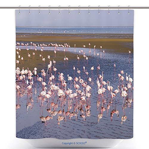 Stylish Shower Curtains Group Of Pink Flamingos On