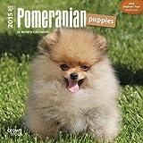 Pomeranian Puppies 2015 Mini 7x7 (Multilingual Edition)