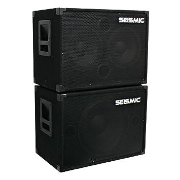 Amazon.com: Seismic Audio - 1x15 & 2x10 BASS GUITAR SPEAKER ...
