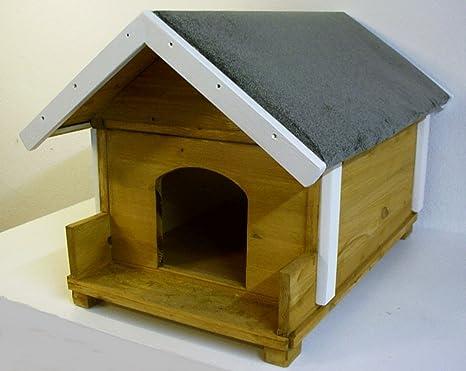 Outdoor gato Casa aislado