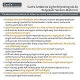 Carl's DIY ALR Ambient Light Rejecting Projector