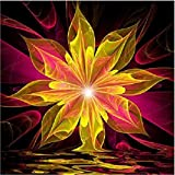 Diamond Painting kits,5D Diamond Rhinestone Pasted Painting-Embroidery Cross Stitch Home Decor-Decorating Cabinet Table Stickers Crystal Paintings Pictures For Study Room,Flower Painting (D, Free)