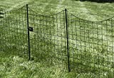 """Zippity Outdoor Products WF29012 Black Metal Gate, 41"""""""