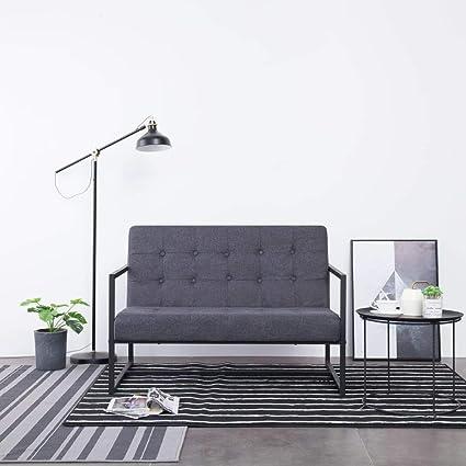 Festnight Sofa A 2 Places Canape De Salon Avec Accoudoirs