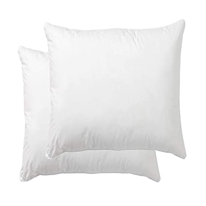 Amazoncom Danmitex Set Of 2 20x20 Down Feather Throw Pillow