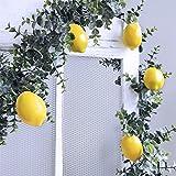 Supla 20 PCS Artificial Lemons Fake Lemons Faux