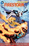 The Fury of Firestorm: The Nuclear Men Vol. 2: The Firestorm Protocols (The New 52)