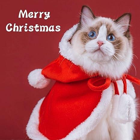 Yungo Disfraz de Navidad para Perro Gato Mascotas, Abrigo ...