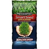 Pennington Smart Seed Sun & Shade Mix N 3 Lb.