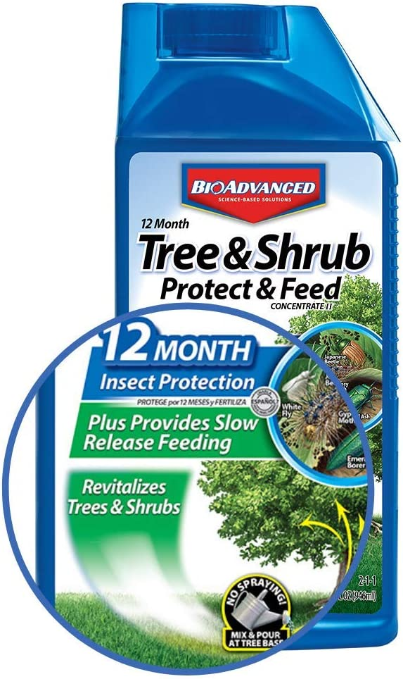 Amazon Com Bioadvanced 701810a Systemic Plant Fertilizer And Insecticide With Imidacloprid 12 Month Tree Shrub Protect Feed 32 Oz Concentrate Garden Outdoor
