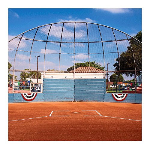 - Photography Backdrop- Baseball Backstop Seamless Fabric Background (8x8)