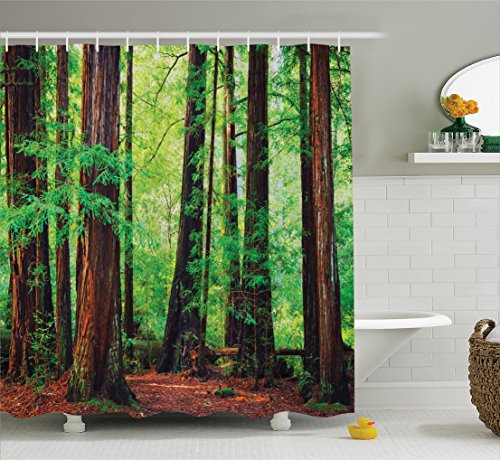 Forest Shower Curtain Woodland Decor by Ambesonne, Redwood T