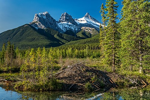 Scenic view of Three Sisters Mountain Policemans Creek Canmore Alberta Canada Poster Print by Panoramic Images (24 x 18)