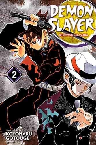 Demon Slayer: Kimetsu no Yaiba, Vol. 2: It Was You