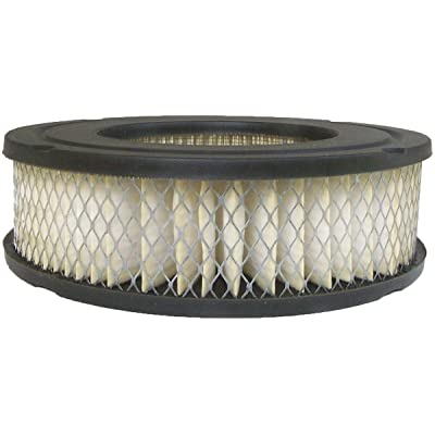 Luber-finer AF317 Heavy Duty Air Filter: Automotive