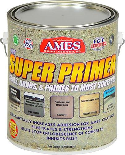 AMES RESEARCH LABORATORIES SP1 Super Primer Unique Clear