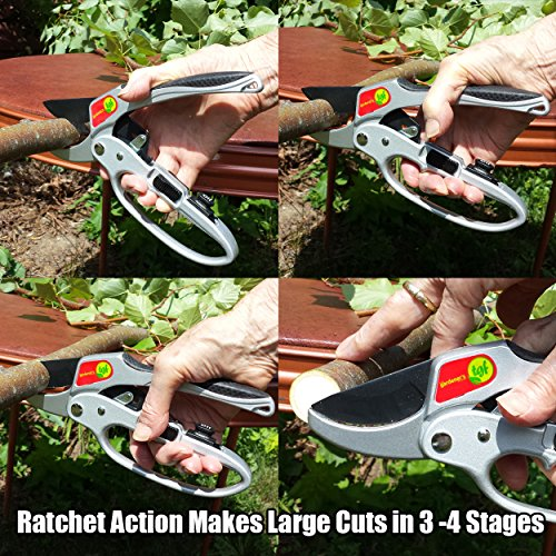Pruners, Ratchet Pruning Shears, Garden Tool, For Weak Hands, Gardening Gift For Any Occasion, Anvil Style, By The Gardener's Friend