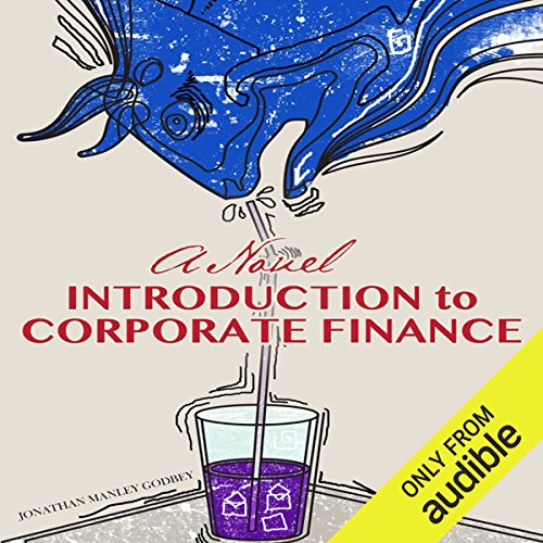 A Novel Introduction to Corporate Finance by Audible Studios