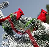 "Clip-On Realistic Feathered Red Cardinals (6 Pack), 3"" Tall Birds; Great for Christmas Decorations, Ornaments, Winter Theme, Wreaths Etc"