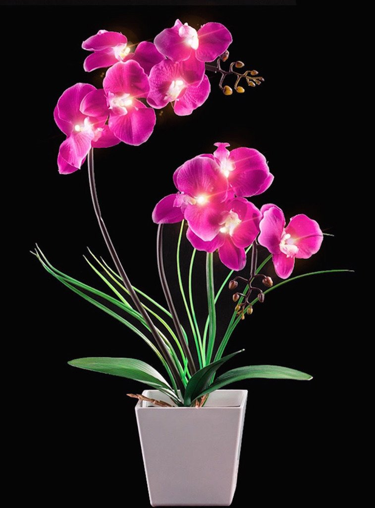 Homeseasons-LED-Lighted-Artificial-Flower-Arrangement-Battery-Operated-Orchid-Pot-with-9-Lights
