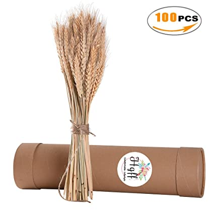 Amazon natural dried wheat bunches flowes for wedding natural dried wheat bunches flowes for wedding centerpieces decorative 100 stems junglespirit Image collections