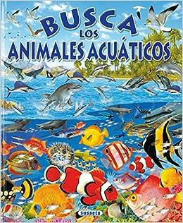 Busca Animales Acuaticos: Amazon.es: Susaeta, Equipo, Arredondo, Francisco: Libros